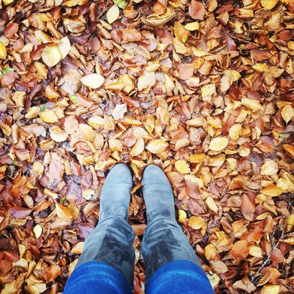 creative and slow living autumn